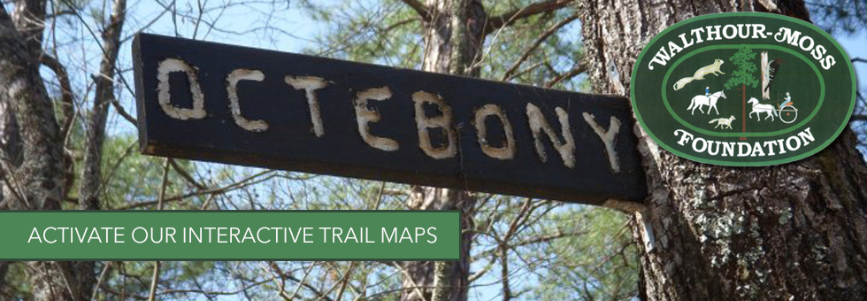 slide trail maps