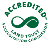walthour accredited